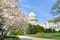 The,Capitol,In,Spring,Season,-,Washington,Dc,,United,States